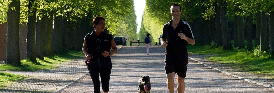 <p>Pour courir<br />avec le sourire !</p>